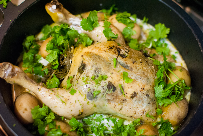 Coconut milk roast chicken pot